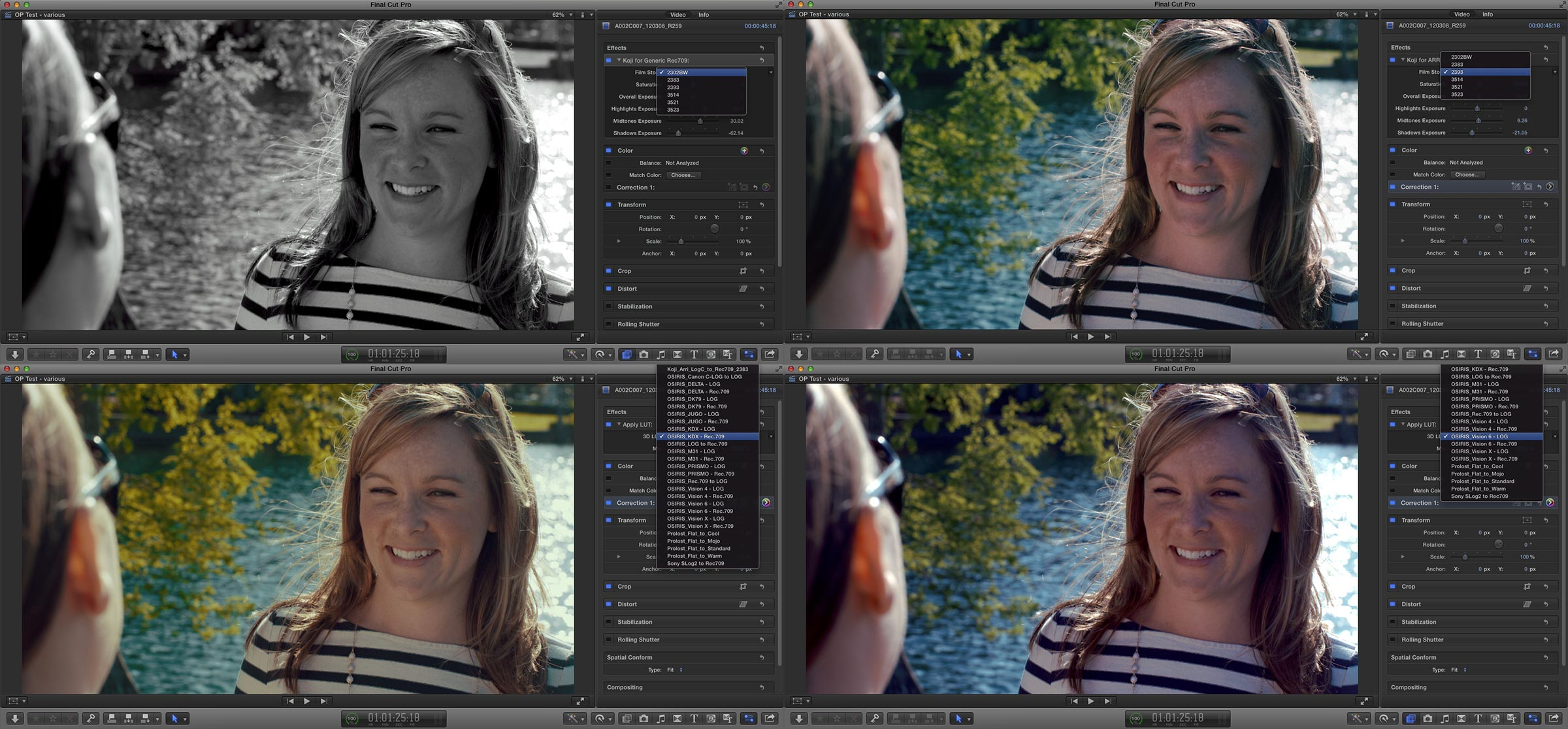 Color LUTs for the Film Aesthetic | digitalfilms